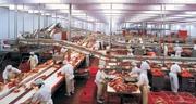 Оборудование для мясопереработки и санитарии