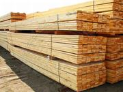 SAWN SOFTWOOD TIMBER
