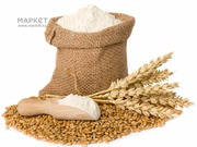 Продам пшеницу 4 класса мягкого сорта,  муку ,  из Казахстана